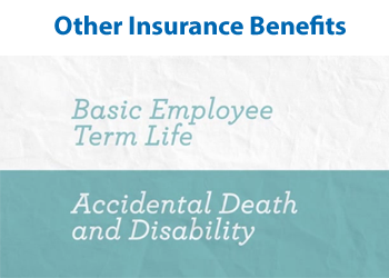 Other Insurance Benefits 2
