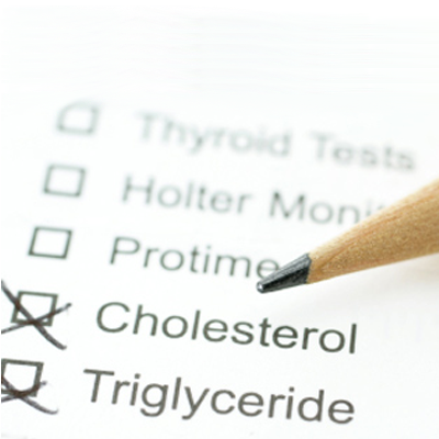 What Causes High Blood Cholesterol?
